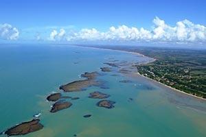 Land Whale Coast